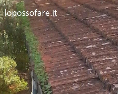 Infiltrazioni d'acqua dal tetto