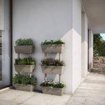 Orto sul balcone: come realizzarlo in modo semplice