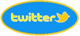 Twitter come funziona questo social