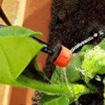 Irrigazione a goccia semplice  fai da te